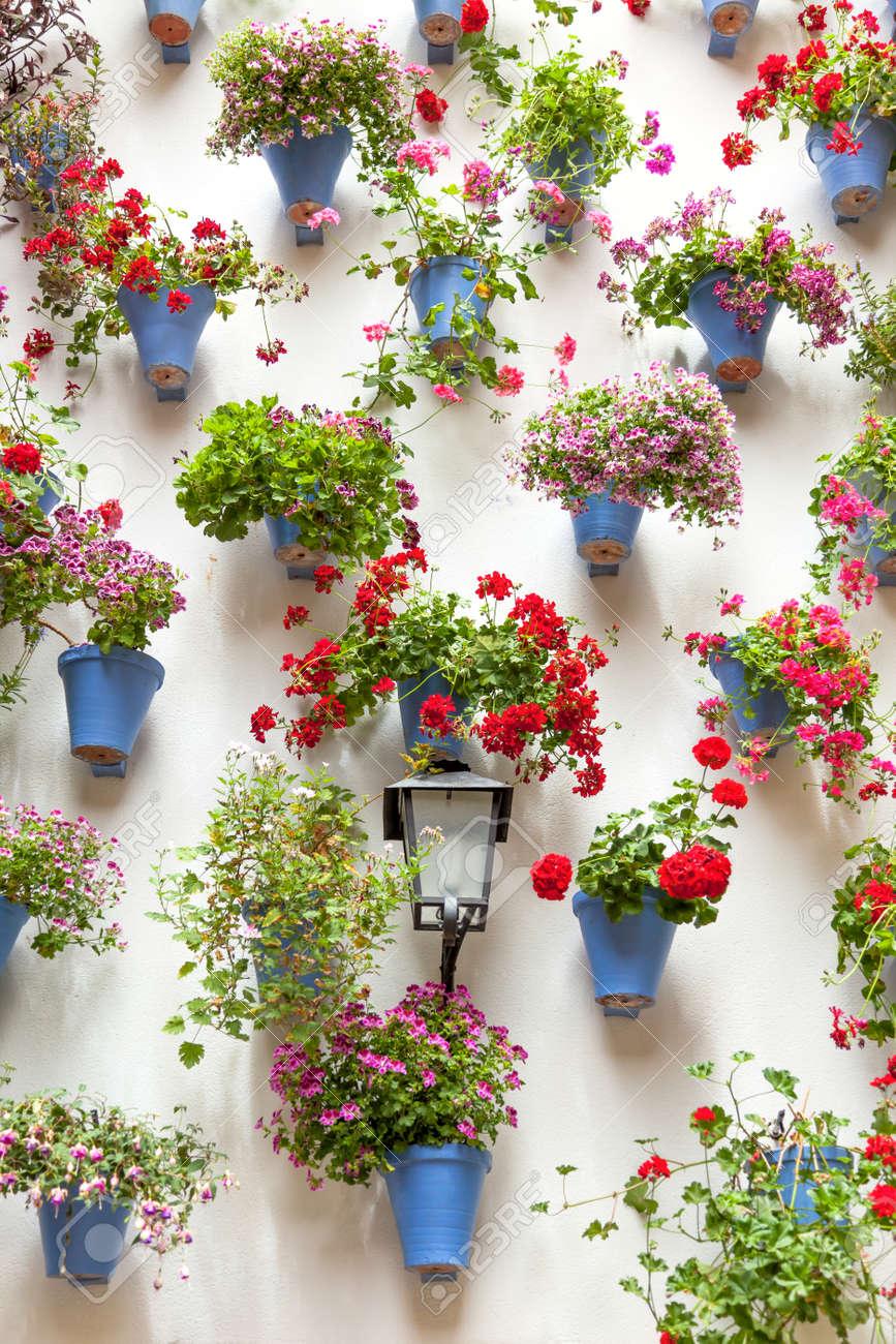 Blaue Blumentopfe Und Rote Blumen Auf Einer Weissen Wand Mit Vintage