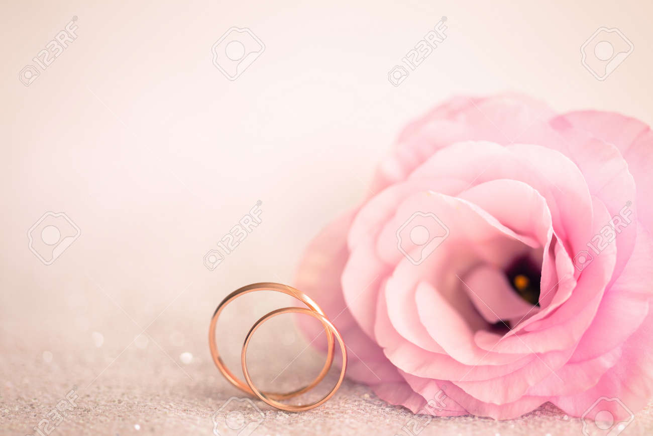 Gentle Pink Wedding Background With Rings And Beautiful Flower Stock ...