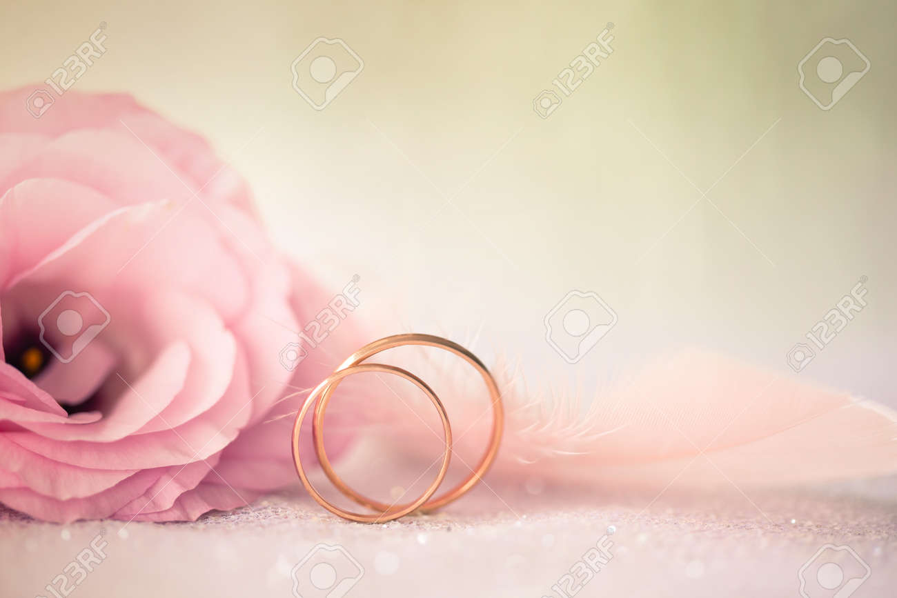 Background with gold Rings and beautiful rose flower - 35806177