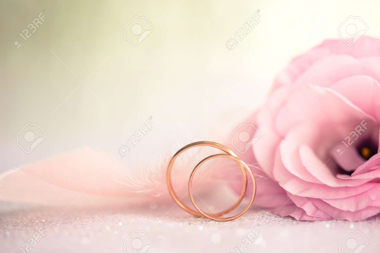 Gentle Wedding Background With Rings And Beautiful Flower, Retro ...