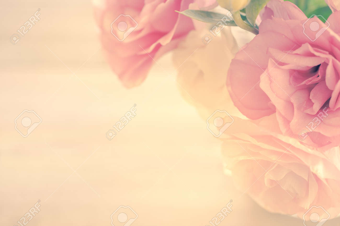 Vintage Floral Background with gentle pink flowers and copy space - 58149605