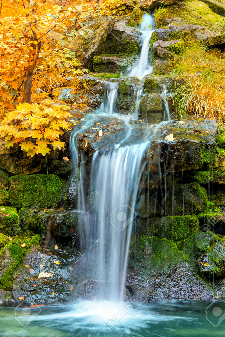 Waterfall in yellow Autumn forest, landscape, vertical - 64521425