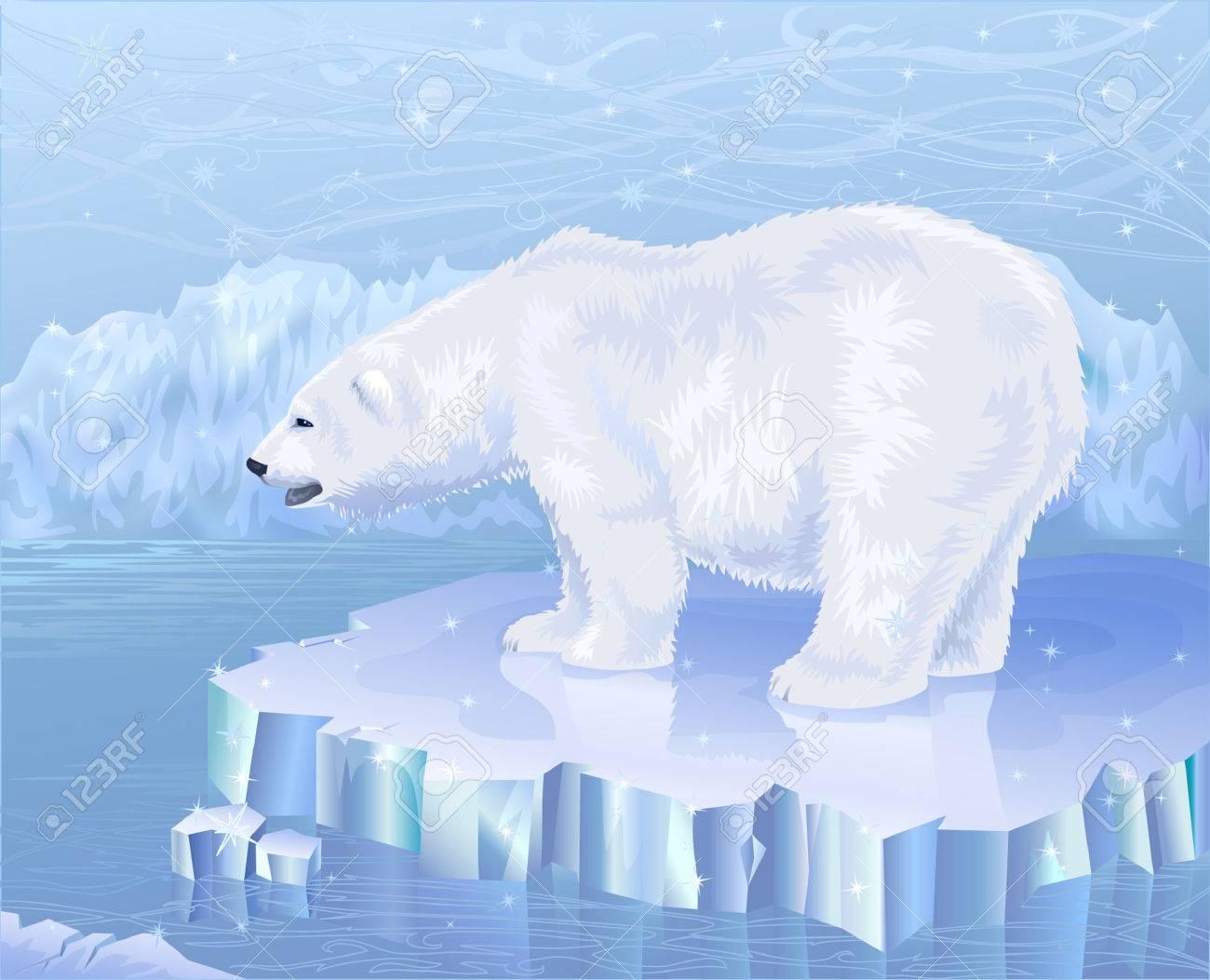 Polar bear standing on an ice floe Stock Vector - 3236510