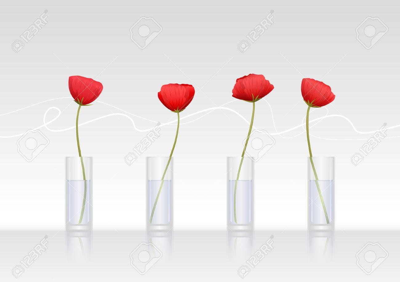 cuatro flores amapolas rojas en jarrones de cristal foto de archivo