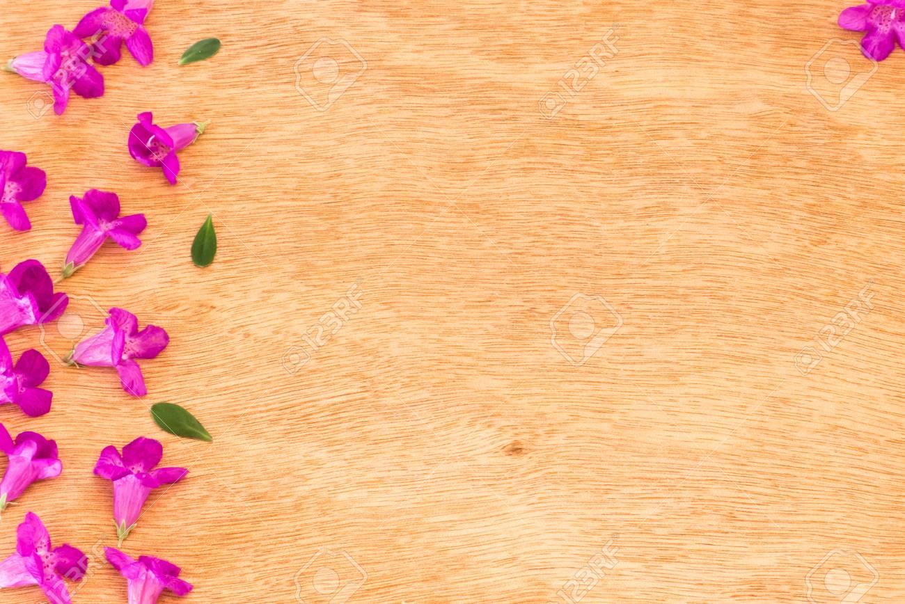 Beautiful Purple Flowers On The Wooden Backgroundspring Break