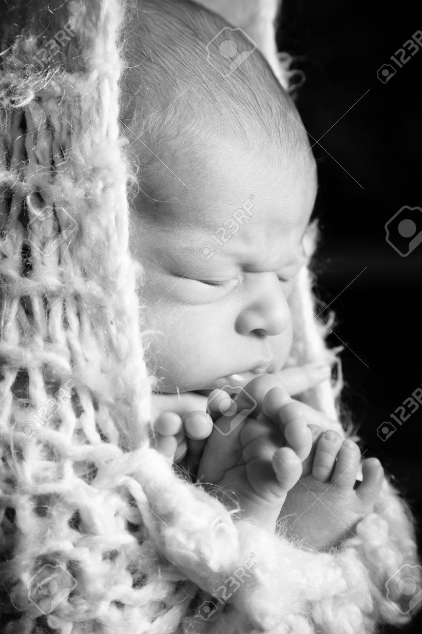 Bebé Durmiendo En Un Capullo Fotos, Retratos, Imágenes Y Fotografía ...