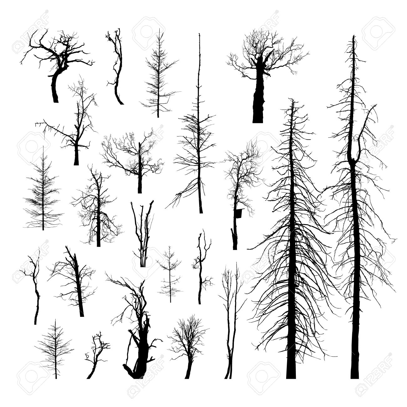 set silhouettes of dead trees vector set of detailed silhouettes rh 123rf com dead tree vector free Vector Dead Tree with Buds
