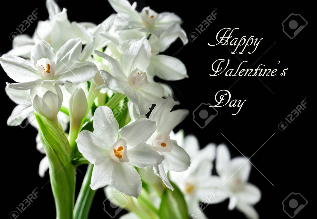 Happy Valentine\'s Day Card With Text And Paperwhite Narcissus ...