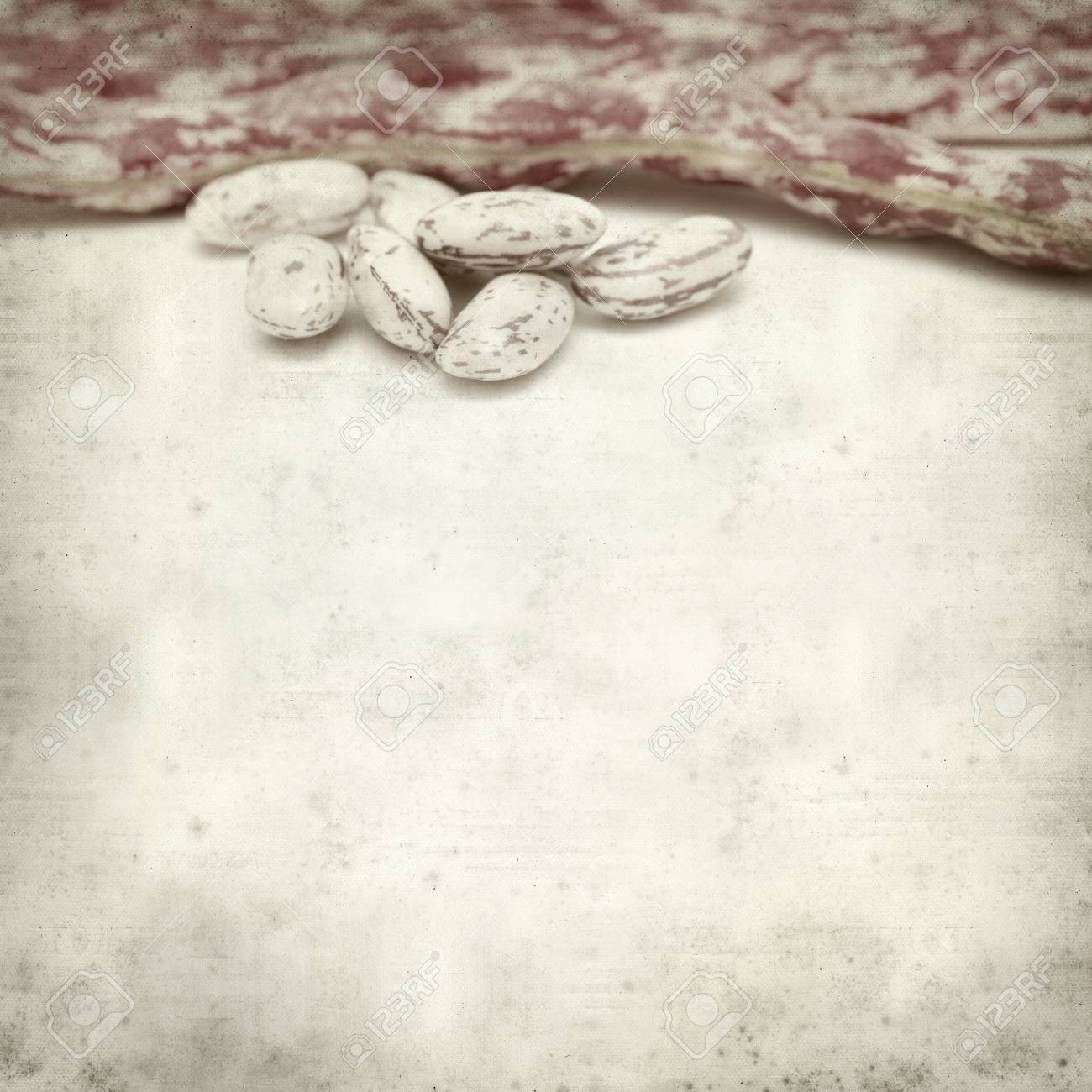 textured old paper background with beans Stock Photo - 29547470