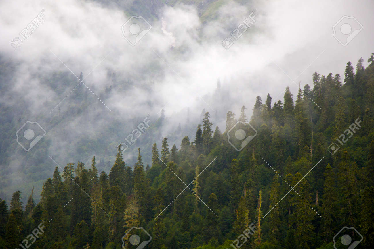 Wonderful and amazing landscape, foggy and misty mountain view in Svaneti, Georgia. Summer in Georgia. - 153119649
