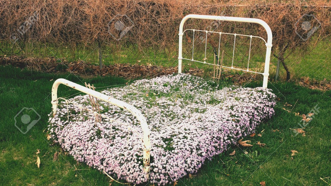 Flower Bed, Outside In Spring. Stock Photo   28613382
