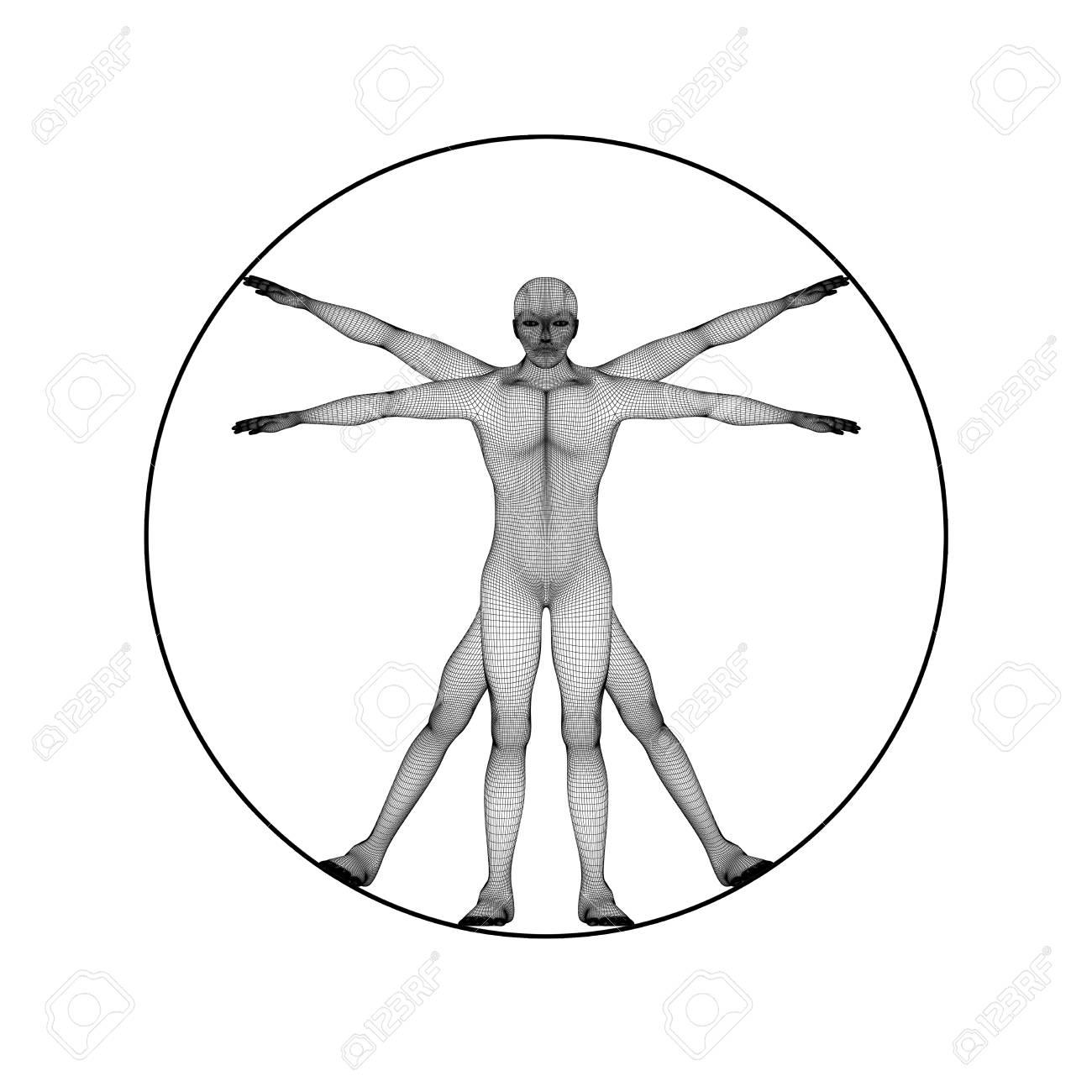 Niedlich Menschliche Anatomie 3d Software Kostenlos Herunterladen ...
