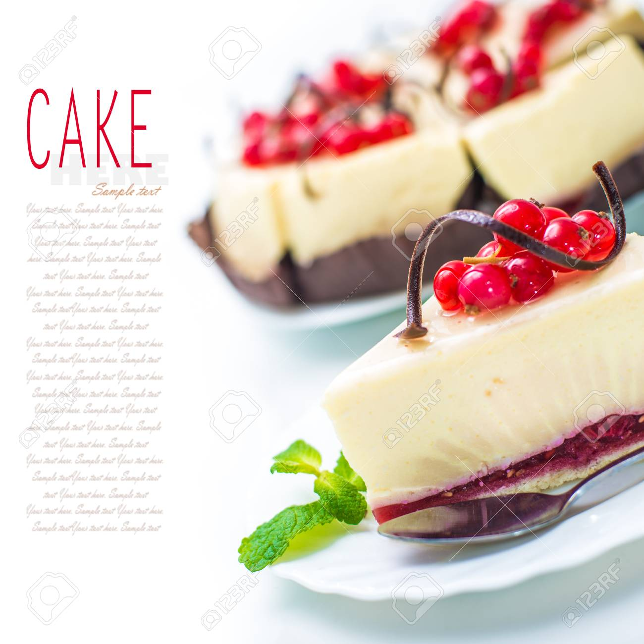 delicious piece of cheesecake decorated with chocolate, currant and mint Stock Photo - 25905784