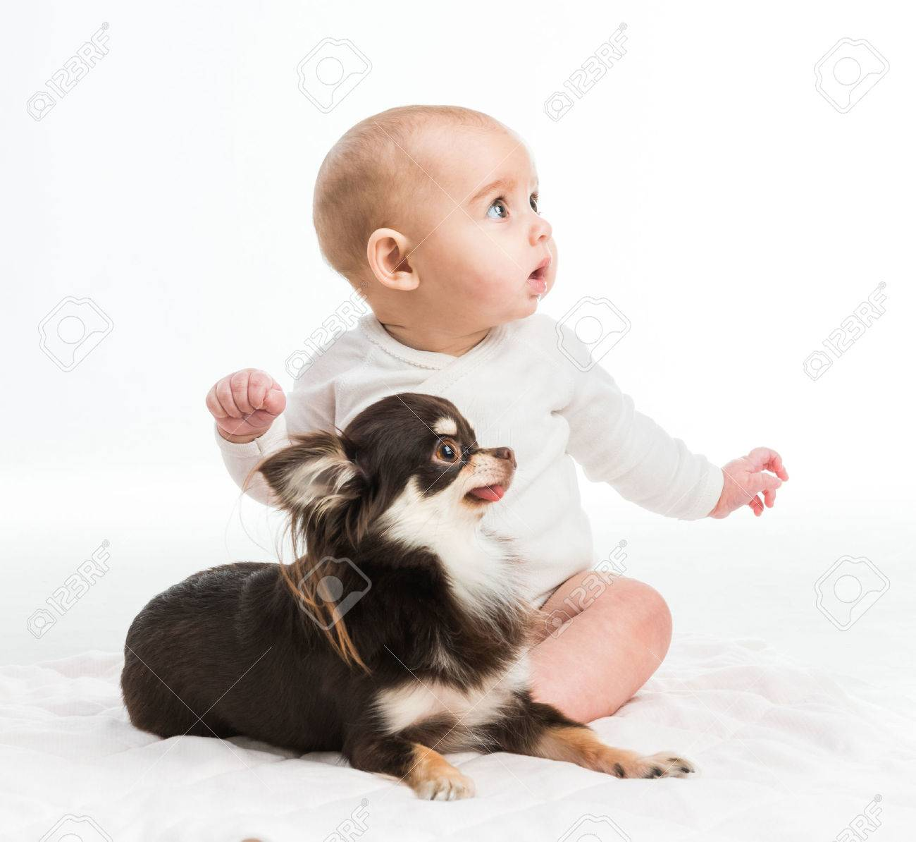 portrait of adorable five months smiling girl with her little dog isolated on white background - 36273867