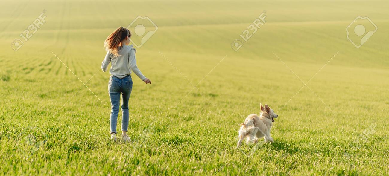 Girl with dog on sunny field - 145090324