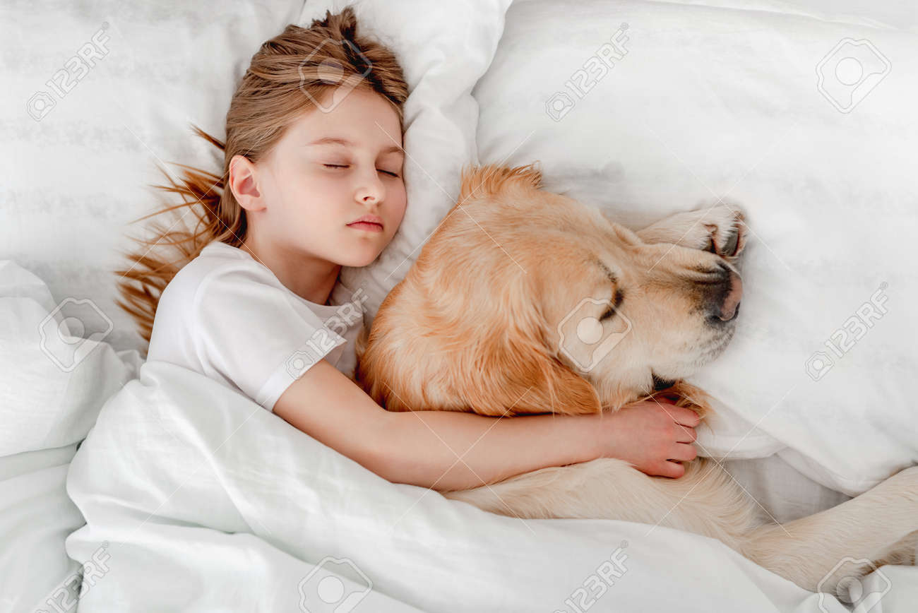 Girl with golden retriever dog in the bed - 172523023