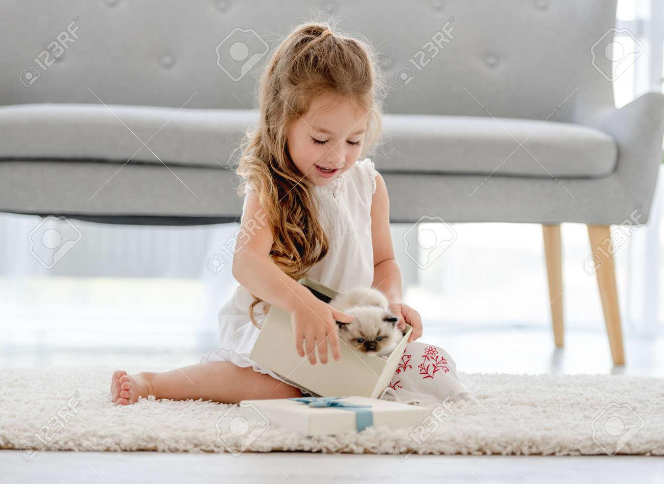 Girl with ragdoll kitten - 173455733