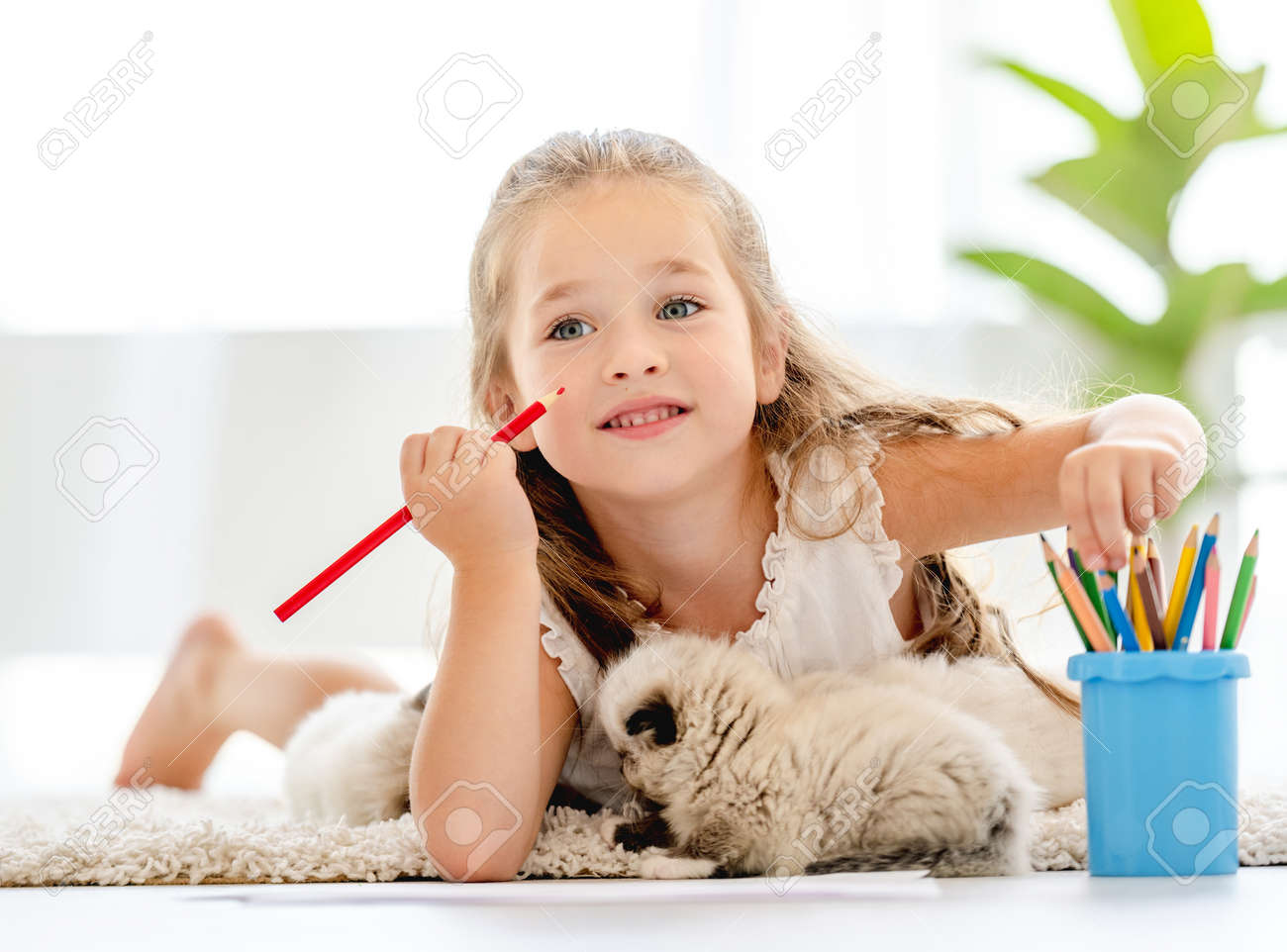 Girl painting with ragdoll kittens - 173455740