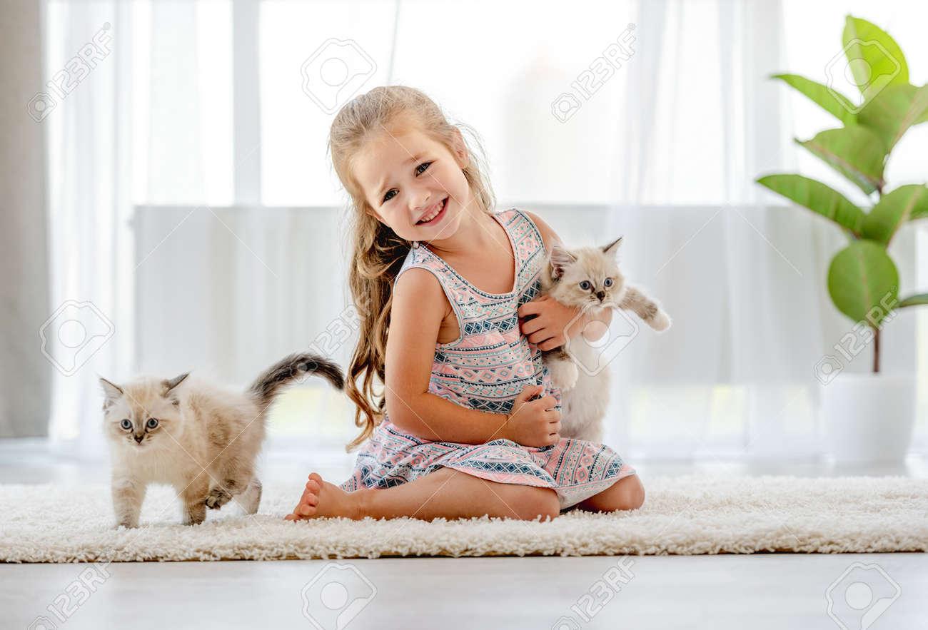 Girl with ragdoll kitten - 173455745