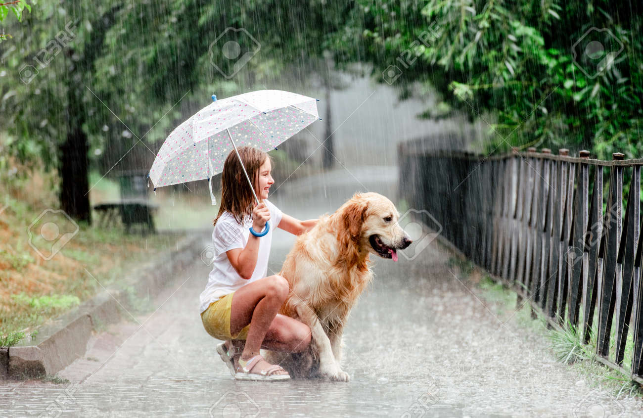 Girl with golden retriever dog in rainy day - 173016529