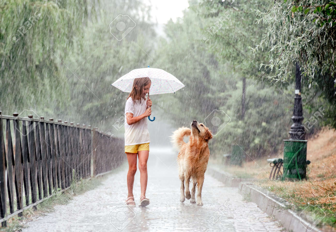 Girl with golden retriever dog in rainy day - 173016403