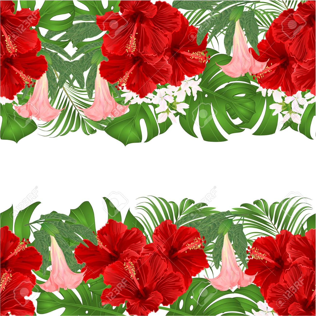 Floral Border Seamless Background Horizontal Bouquet With Tropical