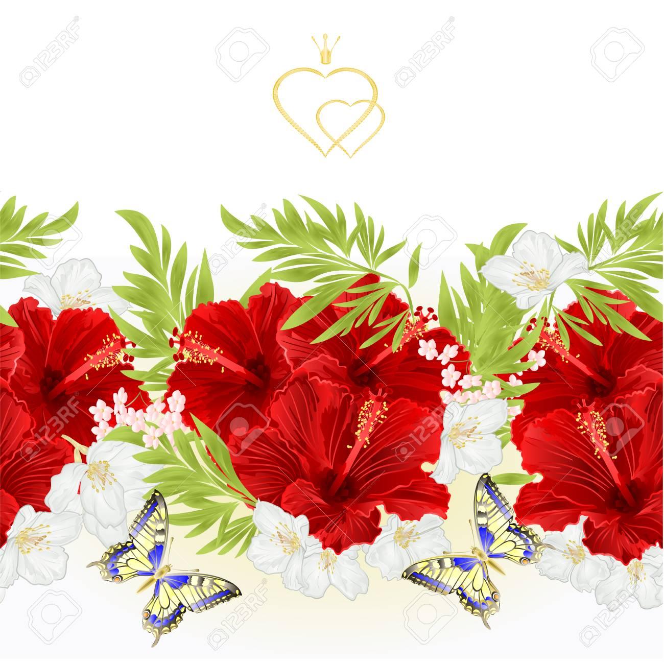 tropical flower border vector