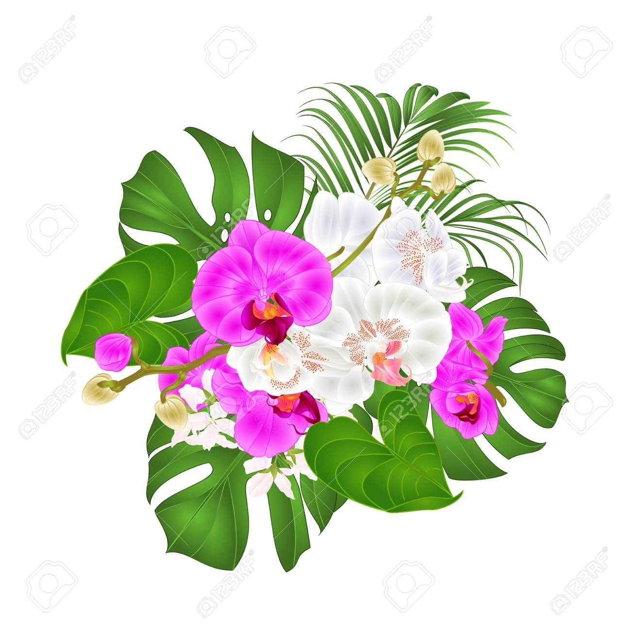 Bouquet With Tropical Flowers Floral Arrangement With Beautiful Royalty Free Cliparts Vectors And Stock Illustration Image 113721570