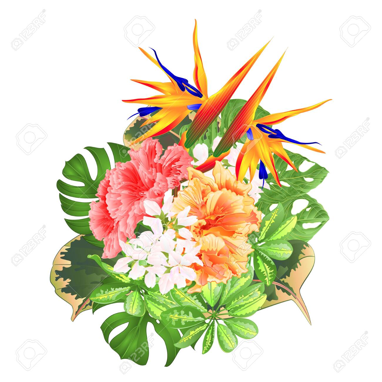 Bouquet With Tropical Flowers Floral Arrangement With Strelitzia Royalty Free Cliparts Vectors And Stock Illustration Image 128434644
