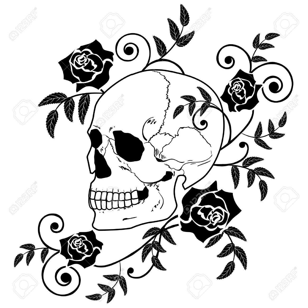 Ilustración Del Cráneo Y Rosas En Colores Blancos Y Negro