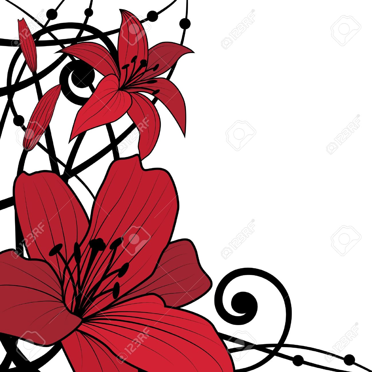 vector background of lily in black and red colors Stock Vector - 9552653