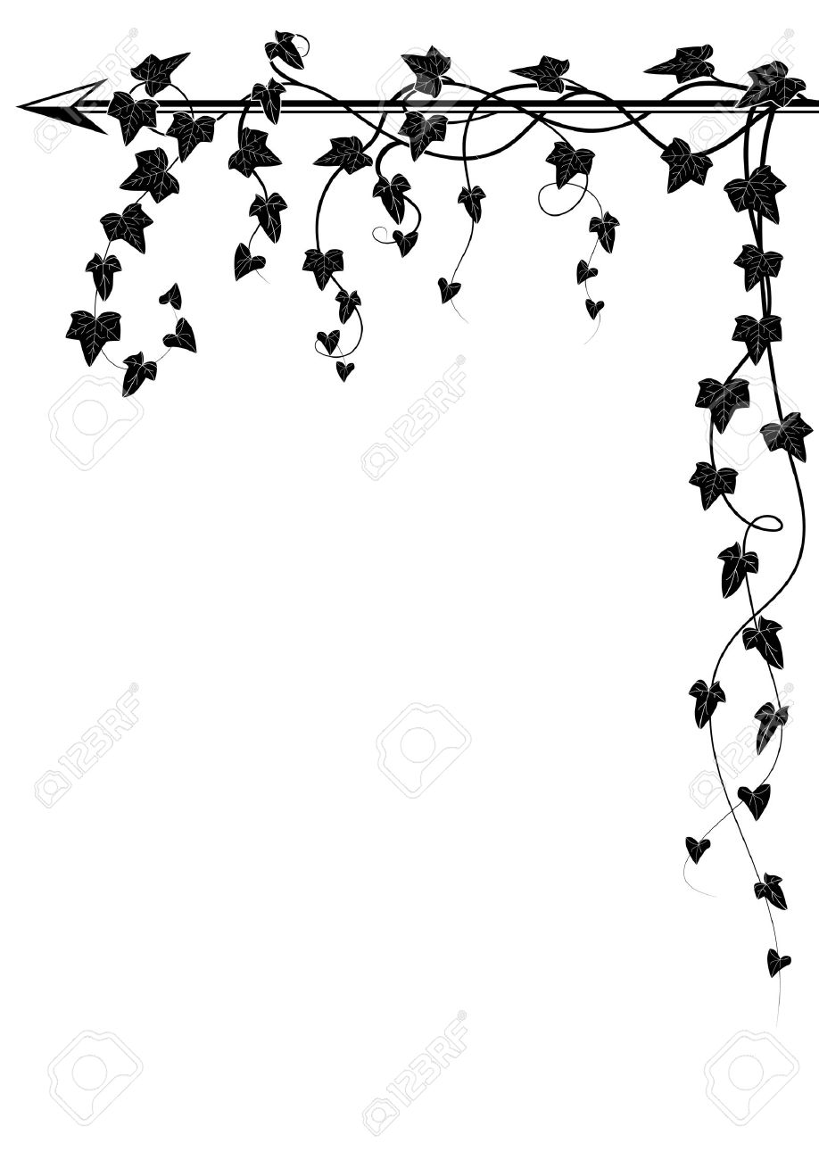 Vector Corner Design With Branch Of Ivy Royalty Free Cliparts