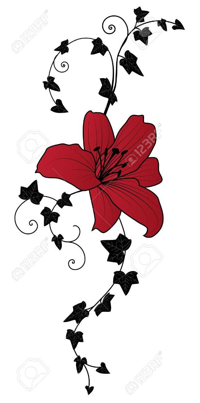 lily and ivy, vector floral illustration Stock Vector - 11478831