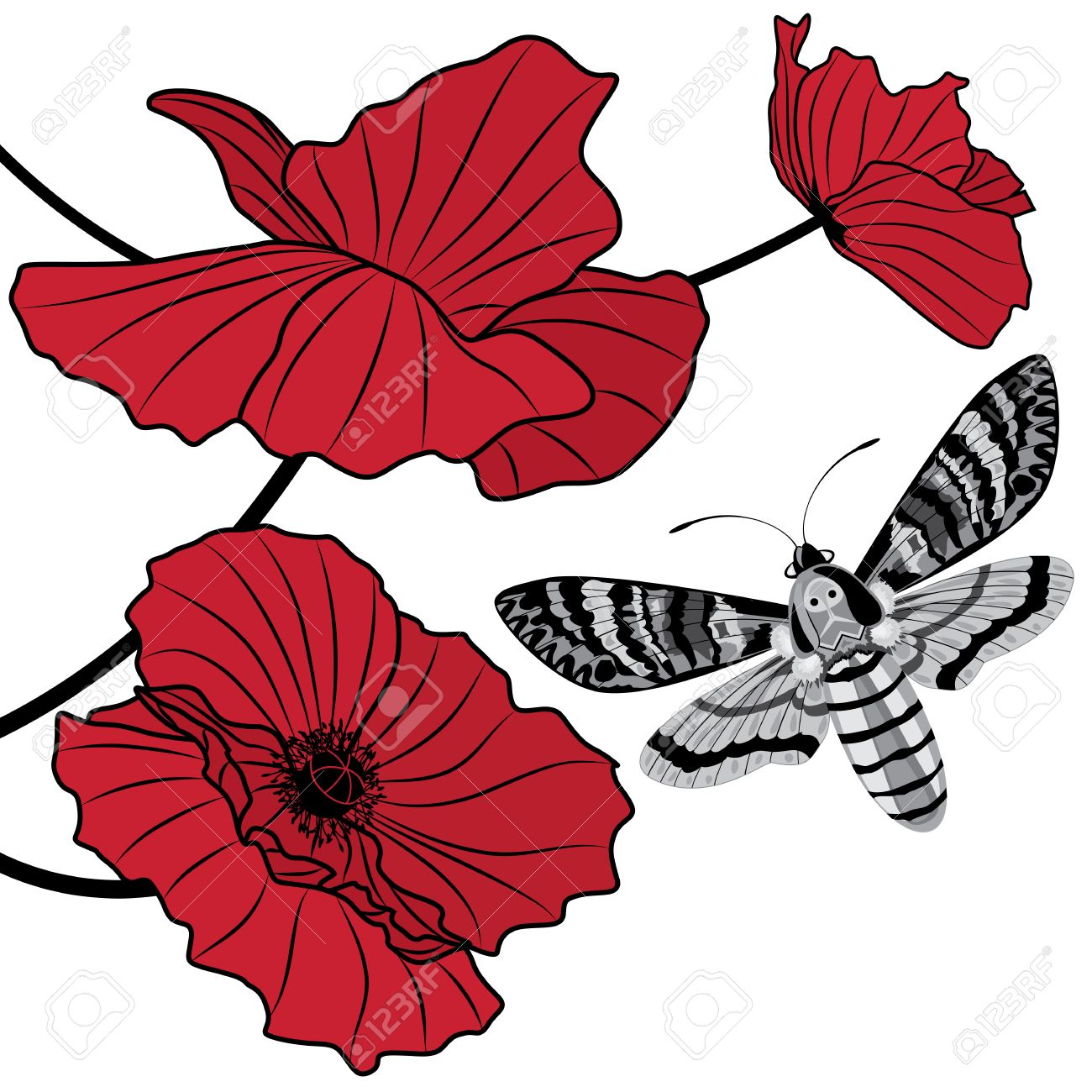 Vector background with deaths head hawk moth acherontia atropos vector vector background with deaths head hawk moth acherontia atropos and flowers of red poppy mightylinksfo