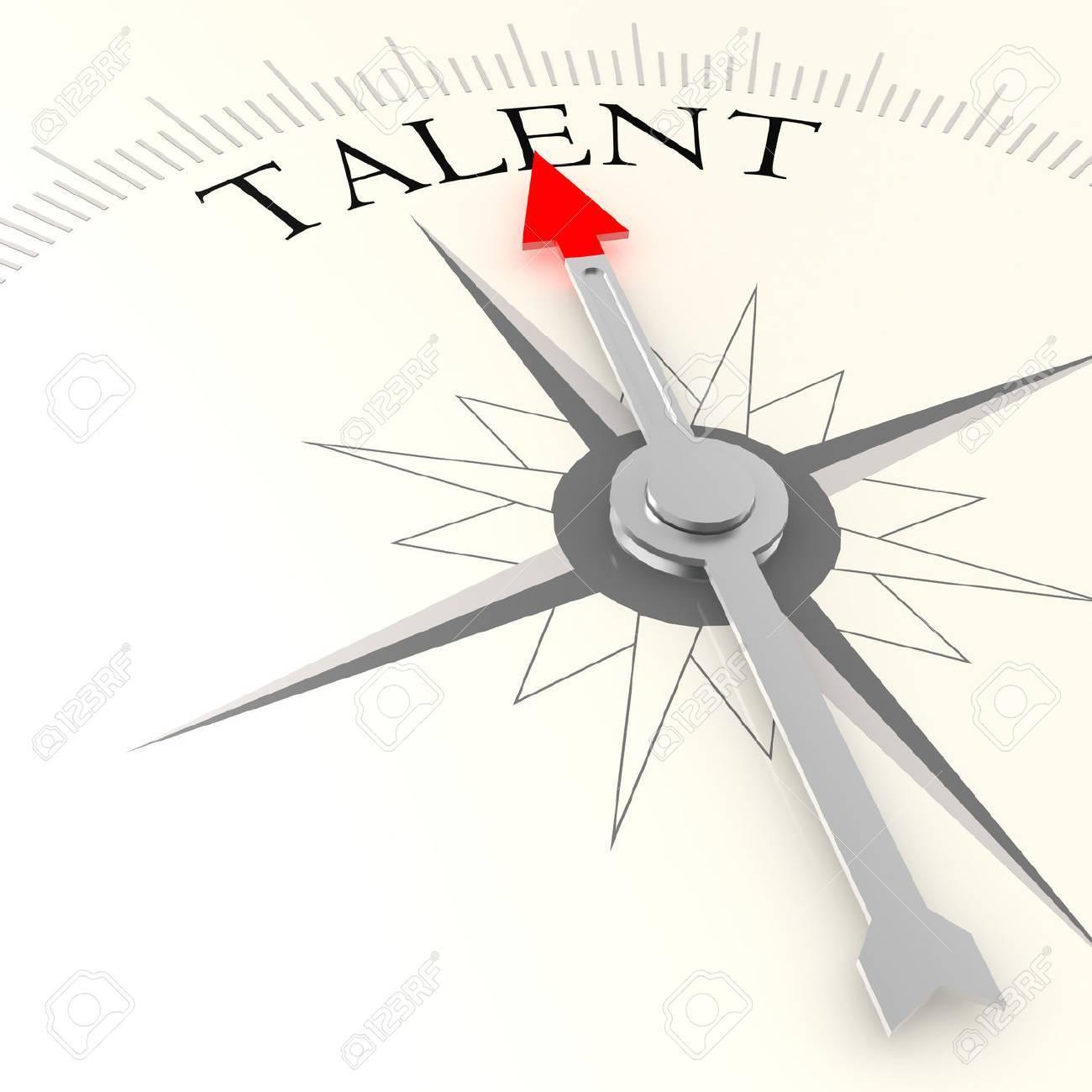 Talent compass - 33908981