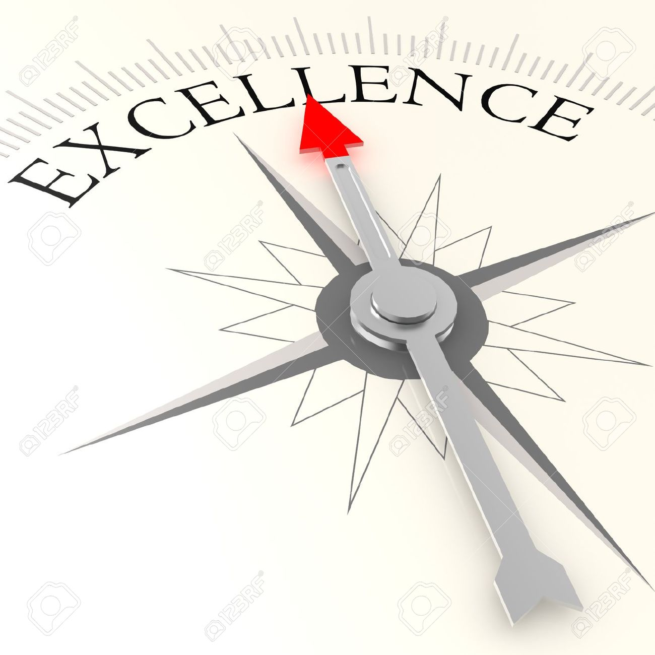 Excellence compass - 35094231