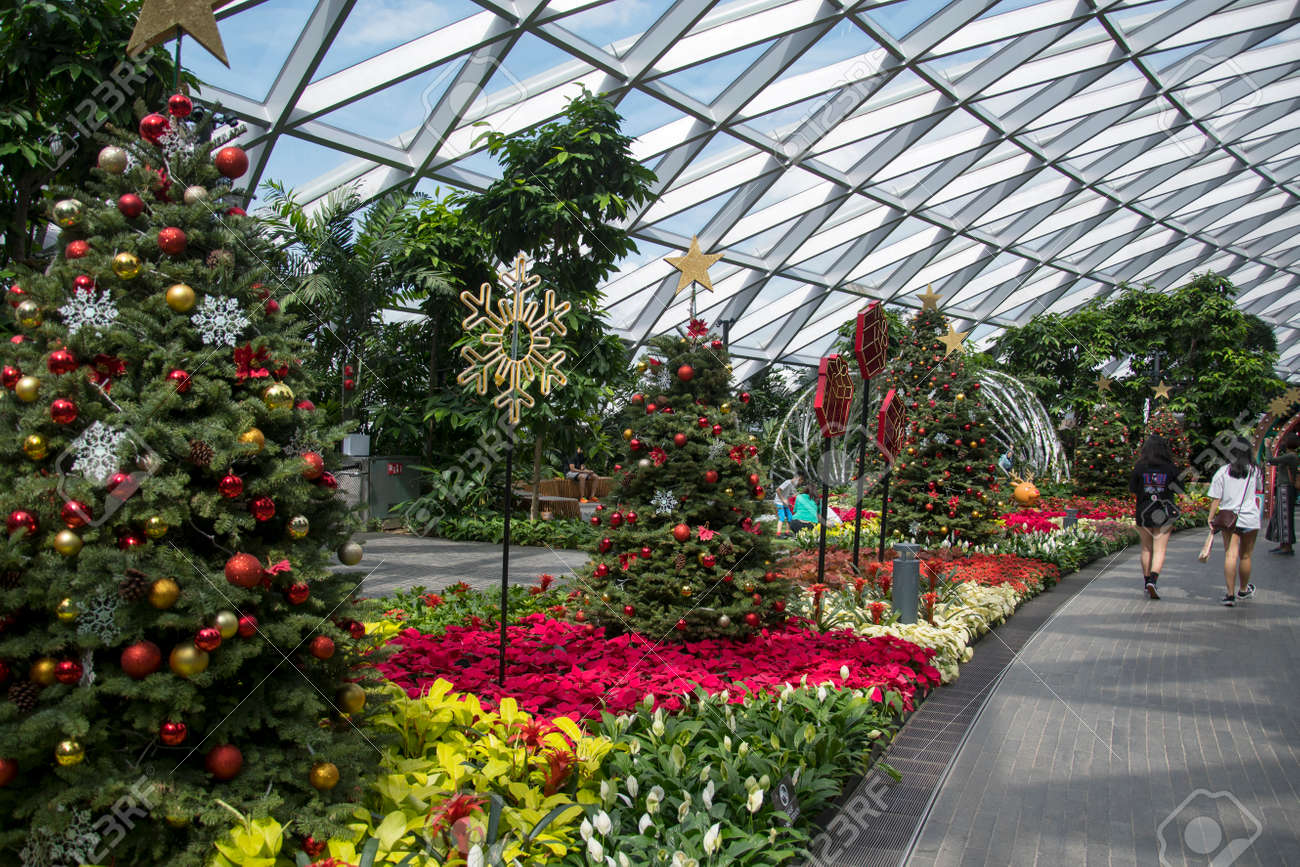 Singapore - Dec 31, 2020: Christmas decoration in Petal Garden at Jewel Changi Airport. - 164269451