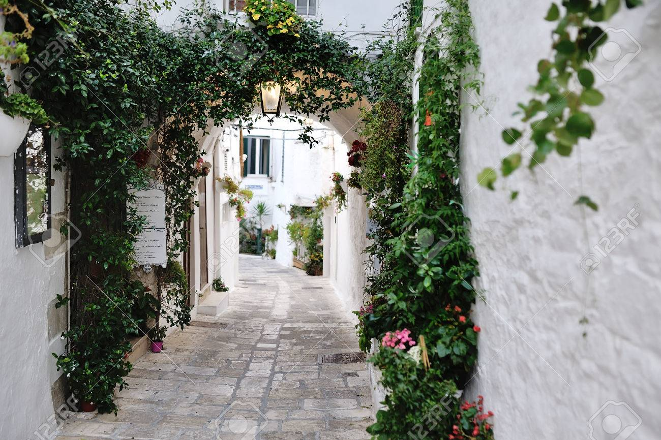 beautiful view of scenic narrow alley with plants, Ostuni, Apulia, southern Italy - 58339354