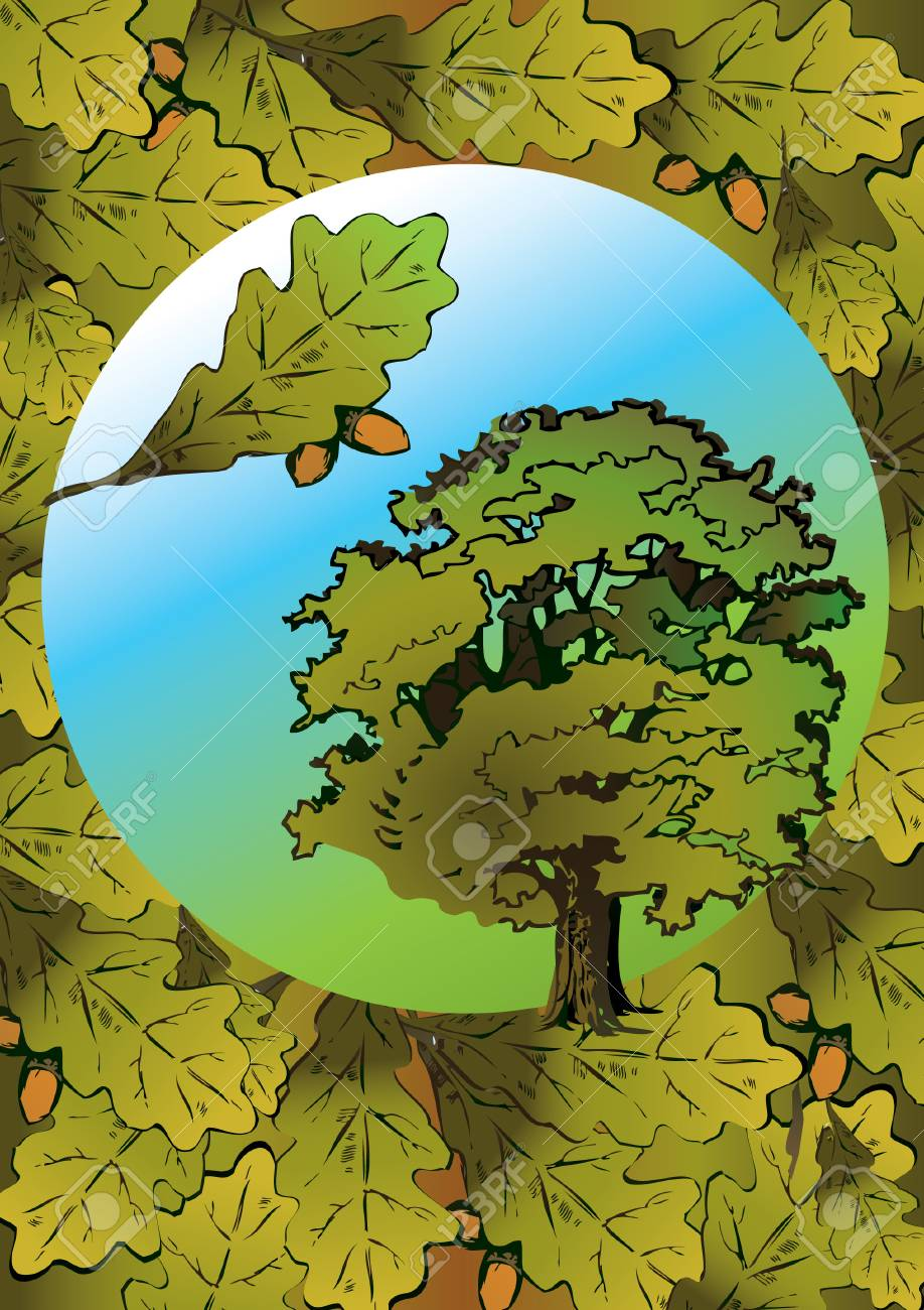 Oak and its branch in the oval. Vector art-illustration. Stock Vector - 5374133