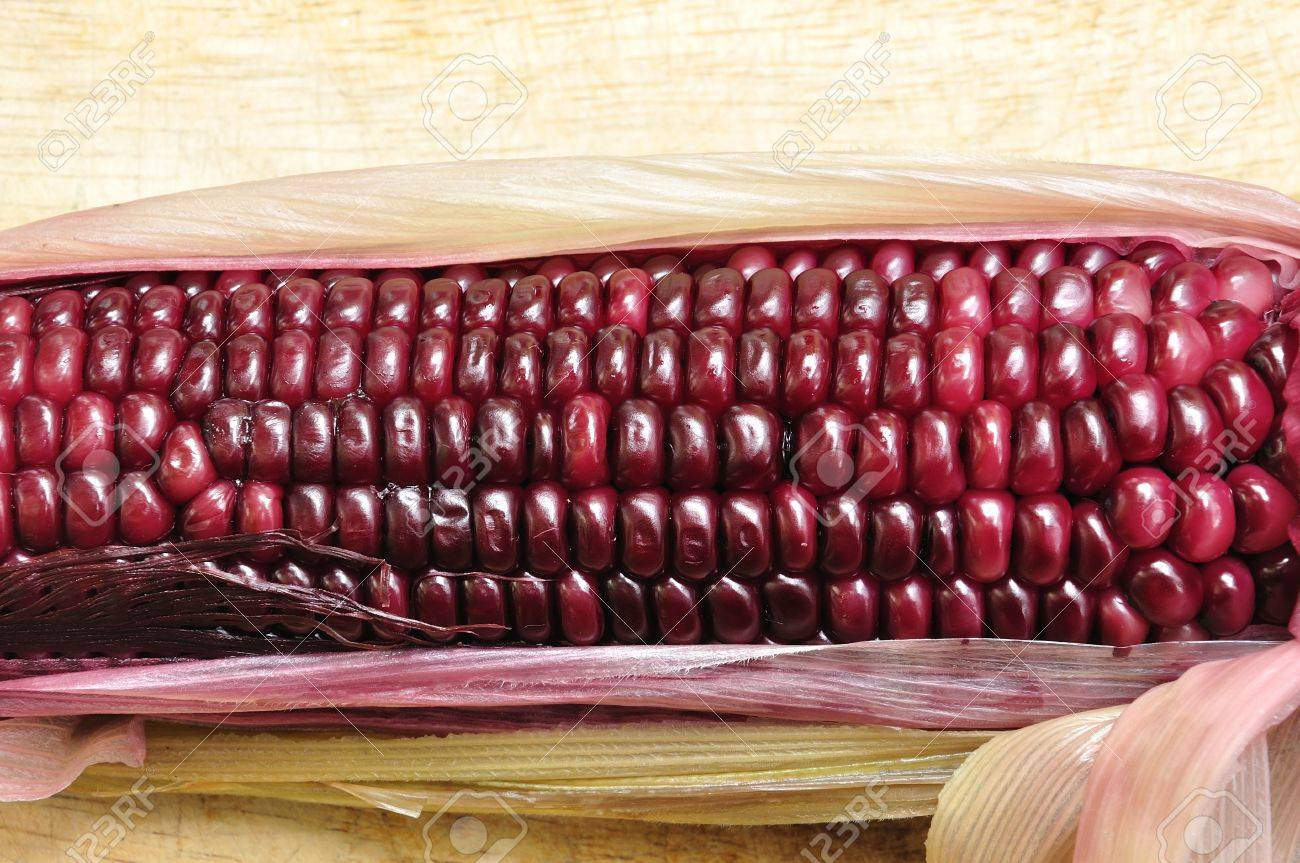 Waxy Corn Stock Photos Images. Royalty Free Waxy Corn Images And ...