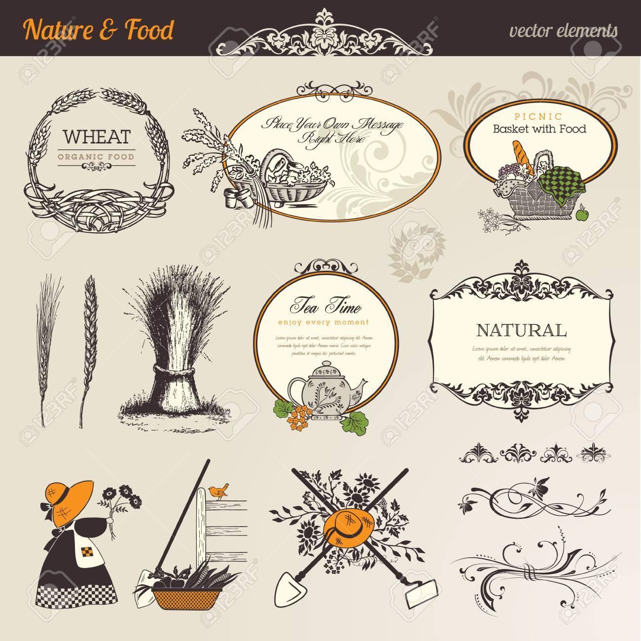 Nature & food vector elements - 11325061