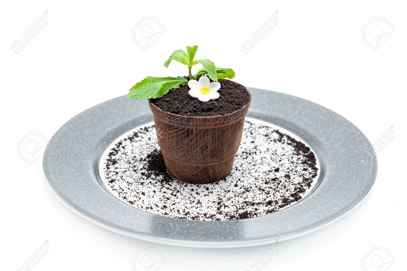 183 & Chocolate flower pot with a cake inside on a plate isolated...