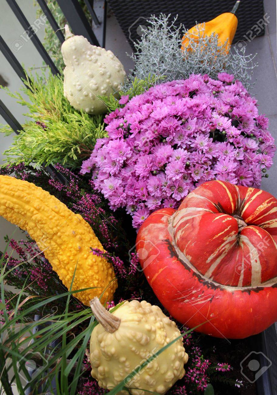 Autumn Garden With A Lot Of Beautiful Flowers And Vegetables Stock
