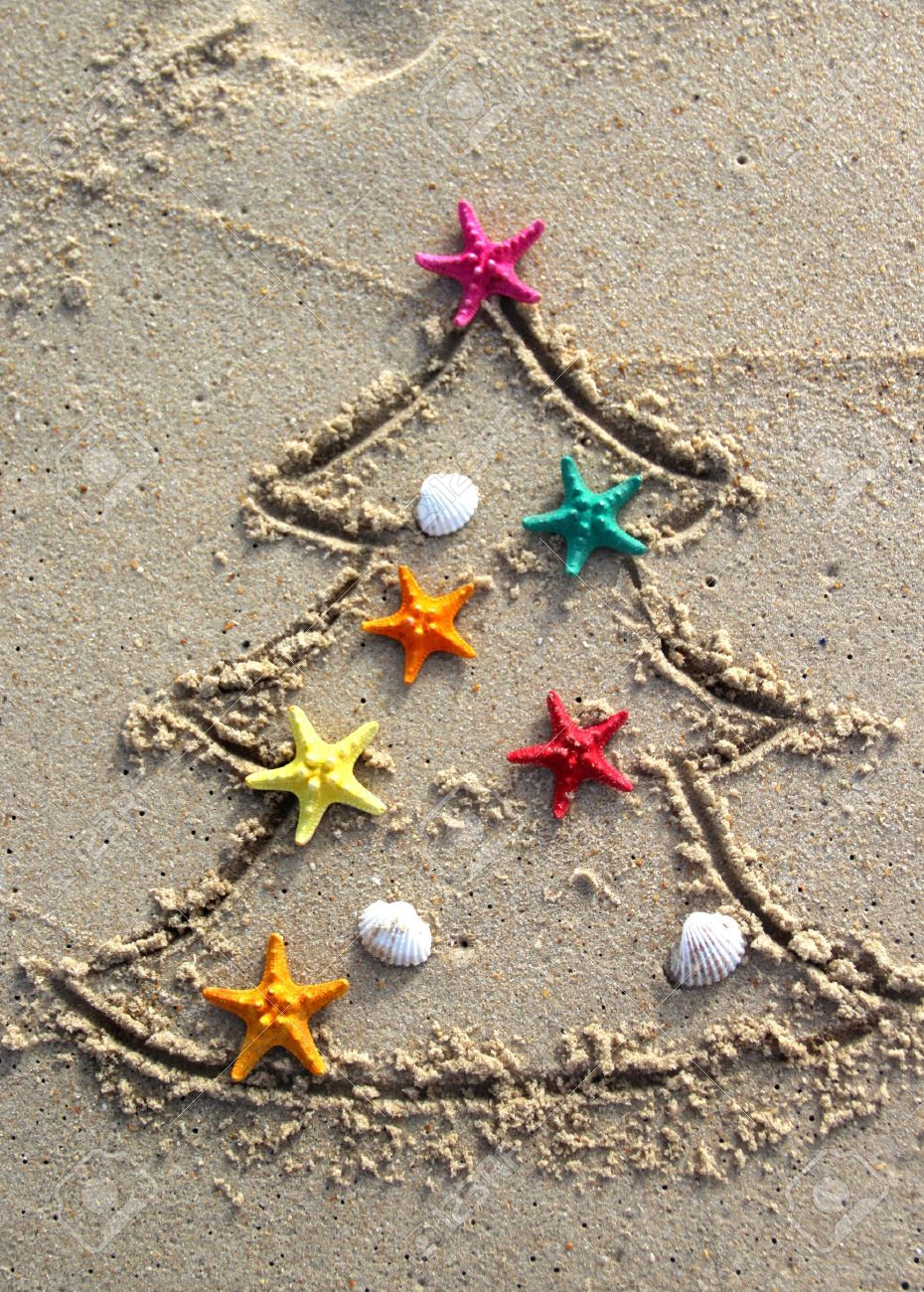 funny beach christmas tree decorated with the sea stars and shells 16478401 - Beach Christmas Pictures