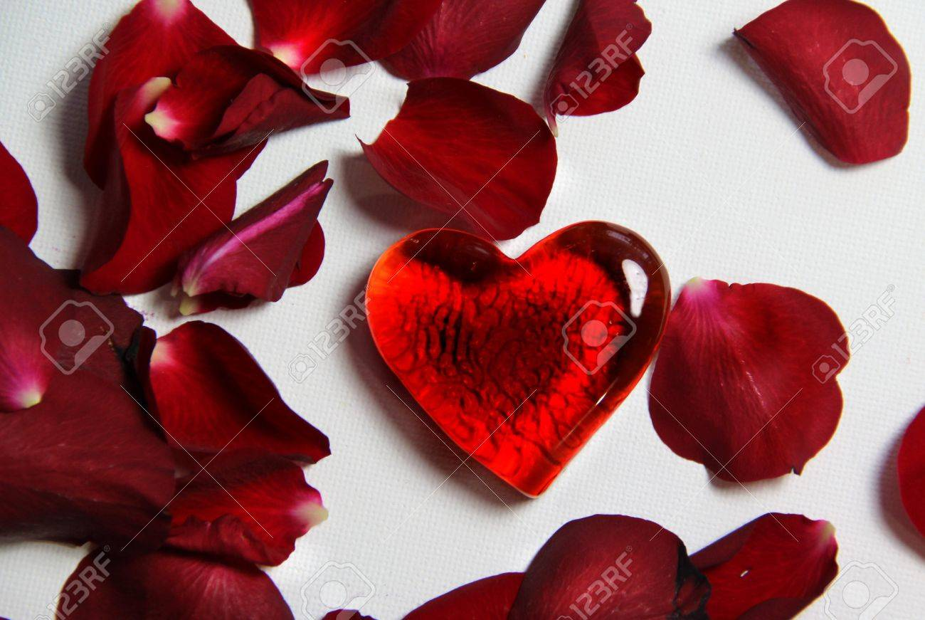 Beautiful Valentine composition of hearts and roses Stock Photo - 17698295