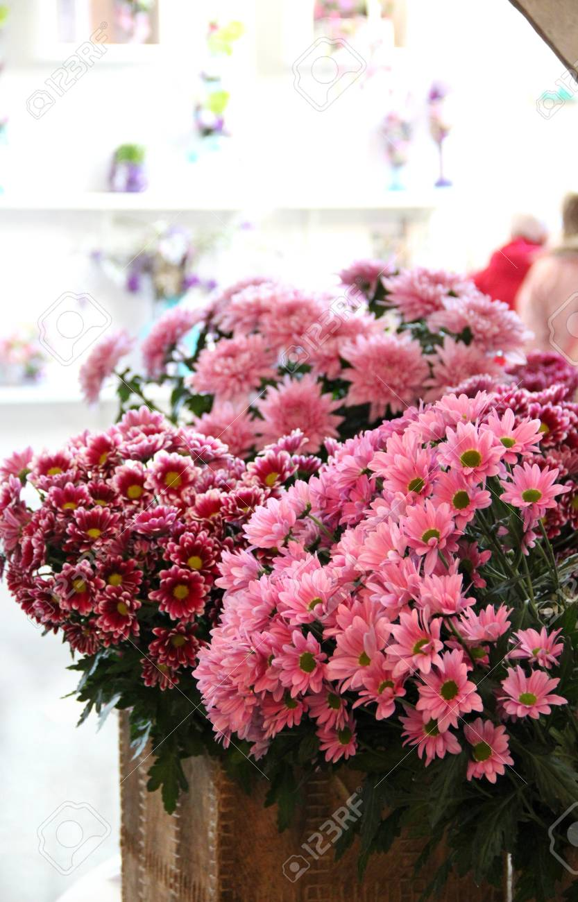 Big Mix Of Amazing Multicolored Flowers In Vases Stock Photo ...