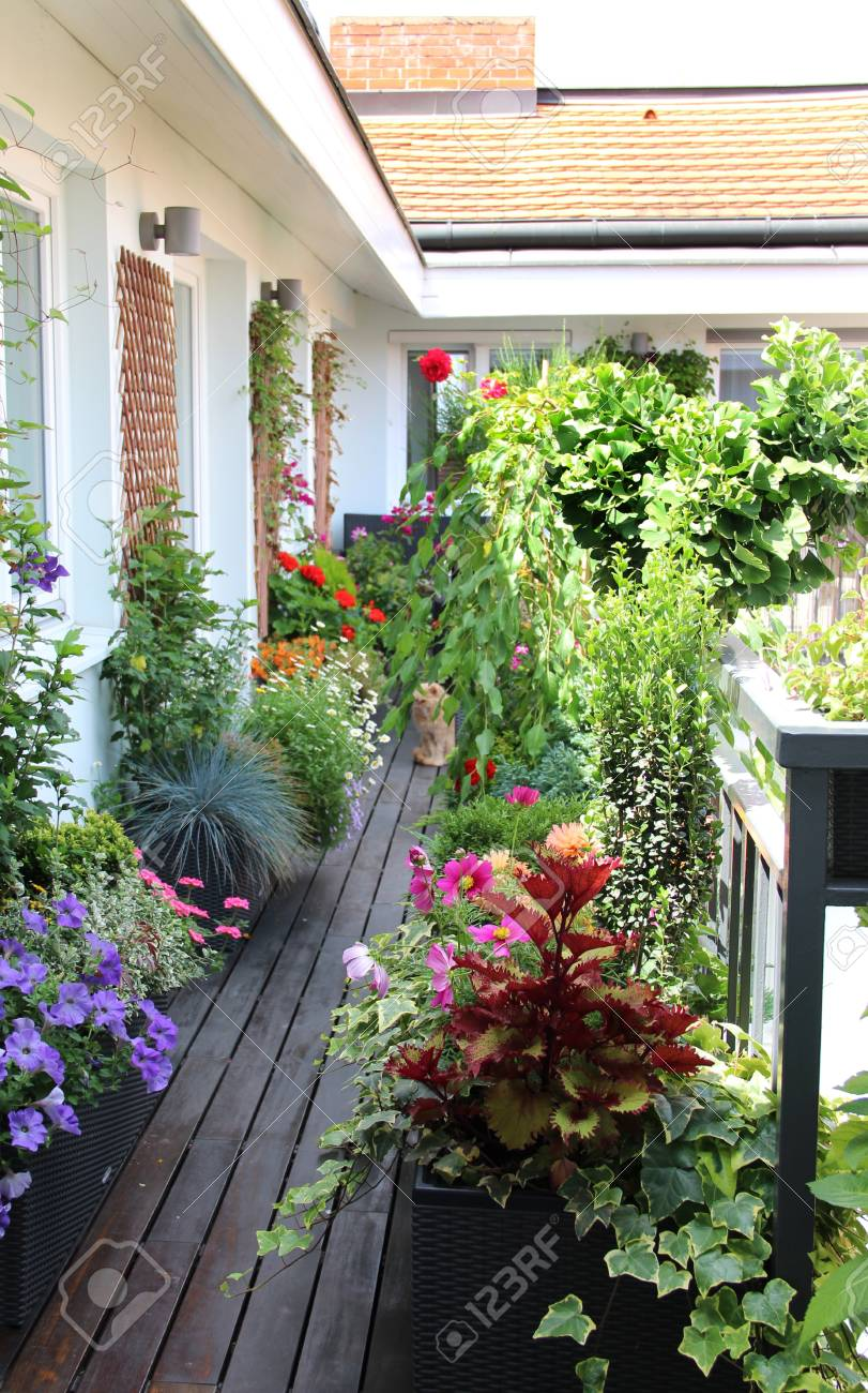 Beautiful house garden terrace with a lot of flowers