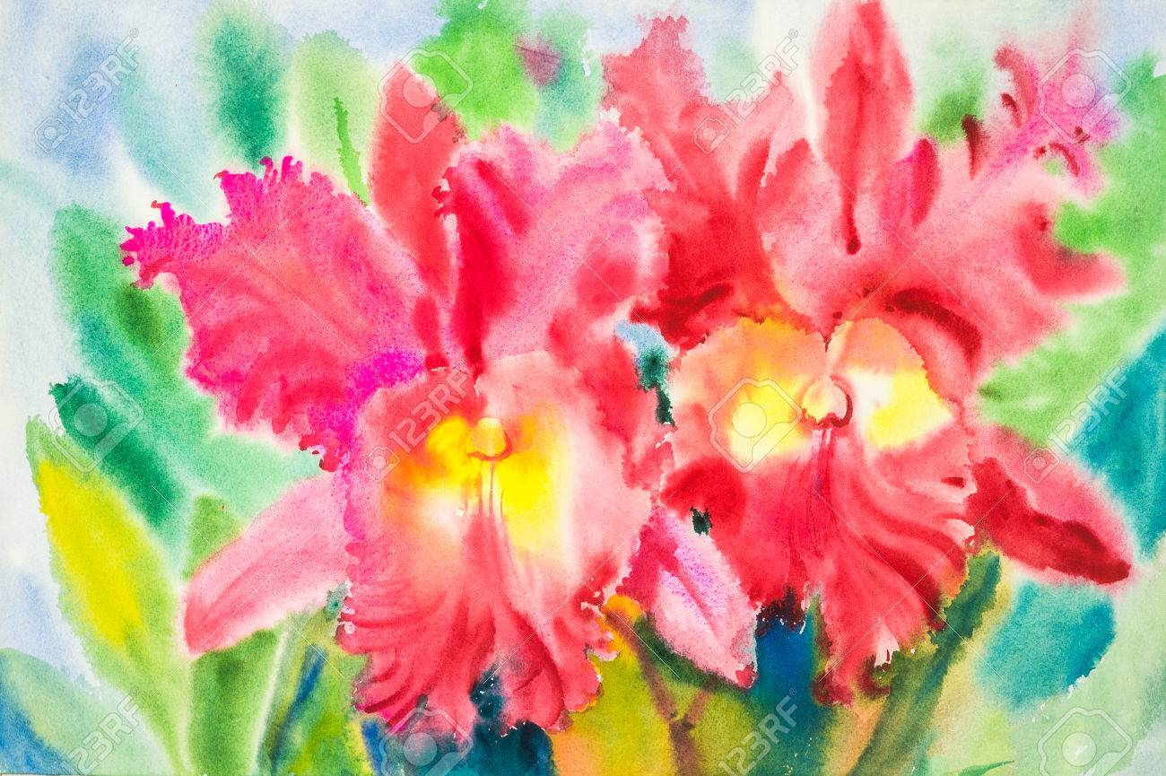Watercolor Original Painting Red Color Of Orchid Flowers And.. Stock ...