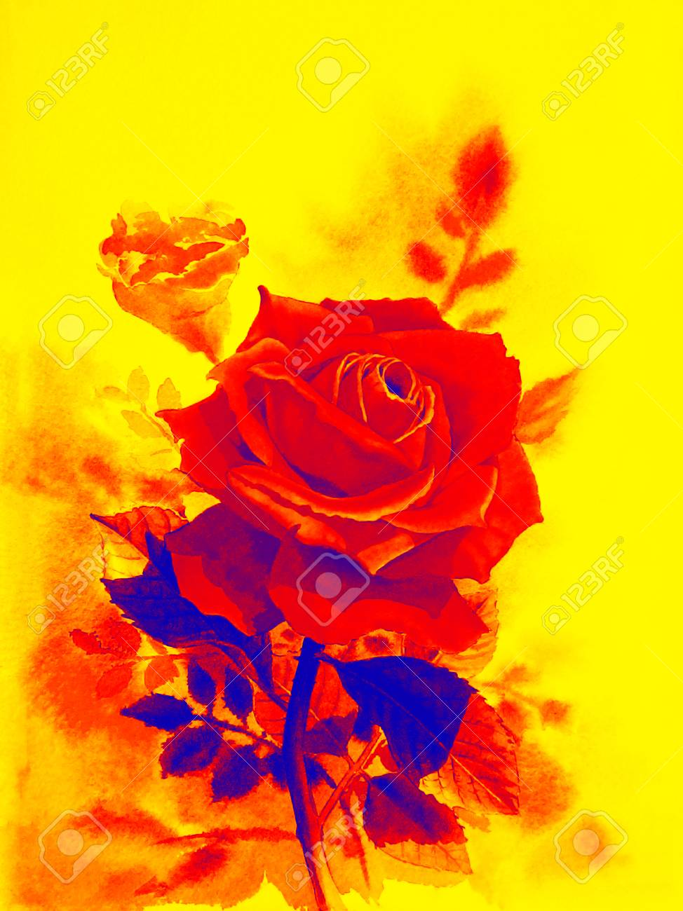 Watercolor Original Realistic Painting Red Color Of Rose Flower ...
