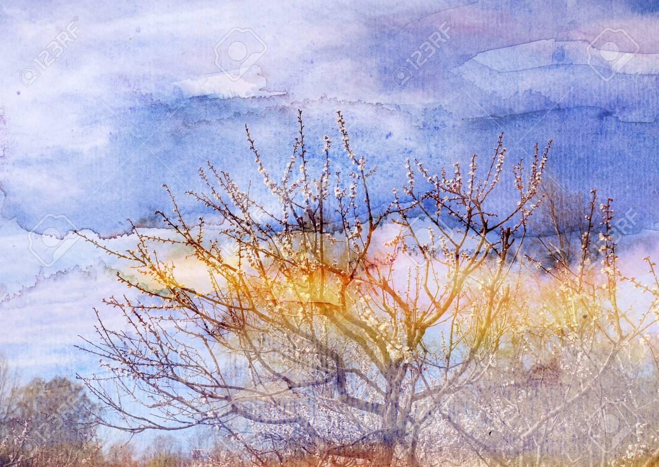 Watercolor retro wonderful spring trees in park - 56011173